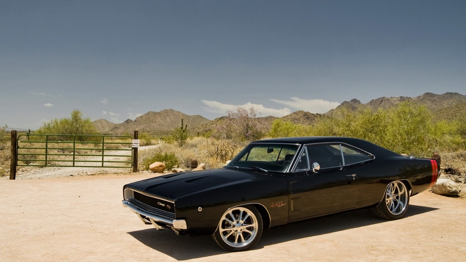 All in One : Cool Dodge Challenger Muscle Cars